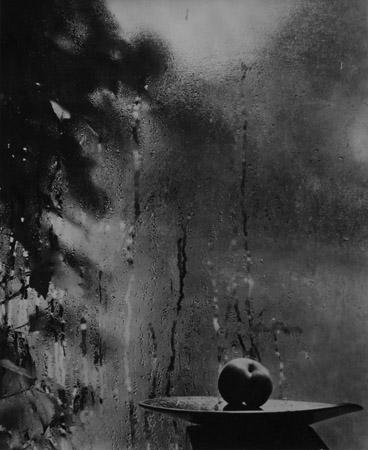 Josef Sudek My Window, 1952  12 x 10 inches silver print