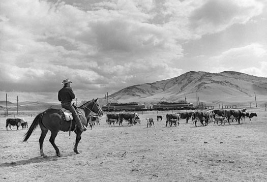 CMSP&P Cowboy & Lil Joes at Sappington Ranch, MT, 1964  11 x 14 inches vintage silver print