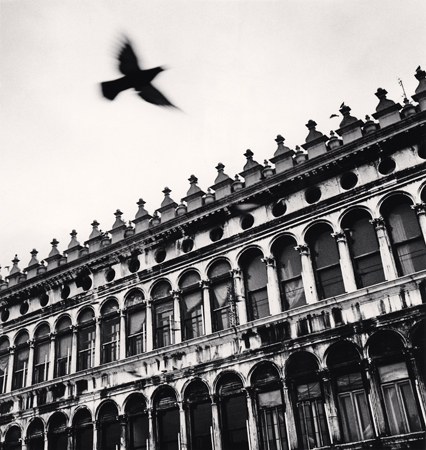 Flying Bird over San Marco, Venice, Italy, 1990  8 x 7.5 inches edition of 45 toned silver print
