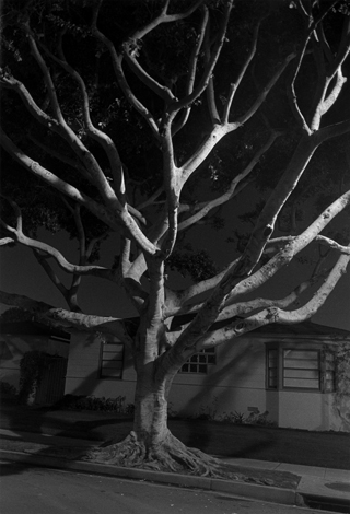 Night Walk #55, Los Angeles, CA, 1998 24 x 20 inches edition of 12 silver print