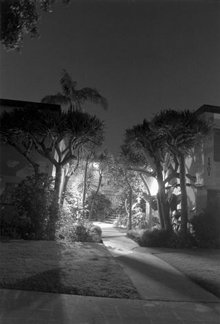 Night Walk #23, Los Angeles, CA, 1995 24 x 20 inches edition of 12 silver print