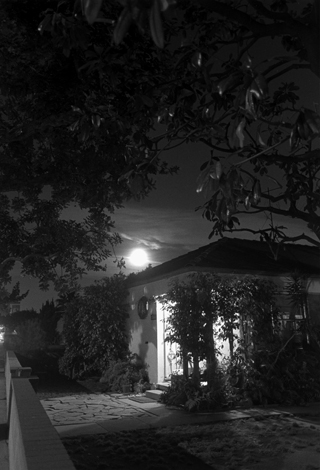 Night Walk #47, Los Angeles, CA, 1998 24 x 20 inches edition of 12 silver print
