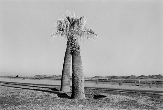 Desert, 1972 20 x 24 inches edition of 12 silver print