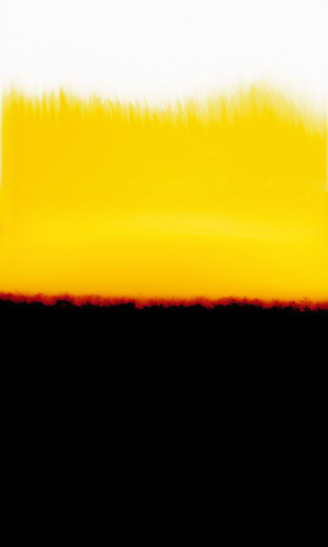 Yellow, 2006 75 x 49 inches edition of 7 chromogenic dye coupler print back and front mounted to plexiglass