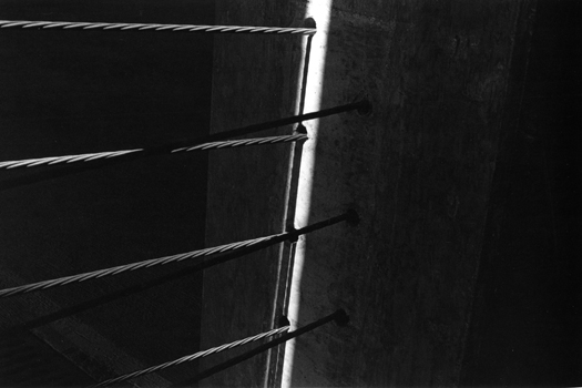 AR79060-19, 1979 from the series  Arena  16 x 20 inches edition of 5 silver print