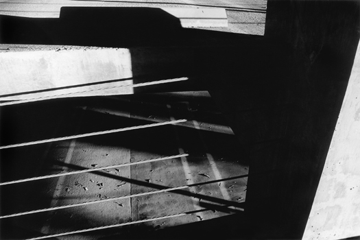 AR78119-12A, 1978 from the series  Arena  16 x 20 inches edition of 5 silver print