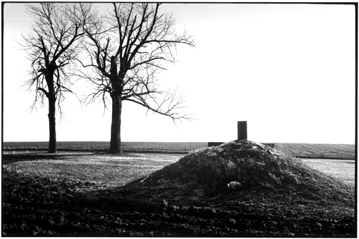MD295-35, 1974 from the series  Midwest Diary  11 x 14 inches vintage silver print