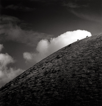 Seven Horses, Iti Maunga, Easter Island, 2001 7.5 x 7.75 inches edition of 45 toned silver print