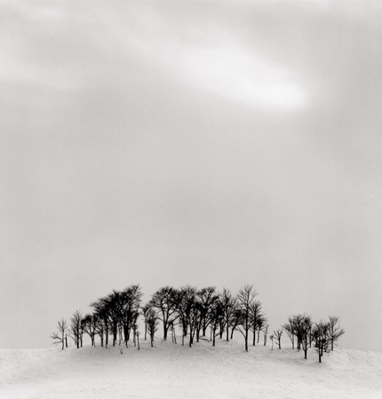 Afternoon Light, Shibecha, Hokkaido, Japan, 2004 8 x 7.5 inches edition of 45 toned silver print