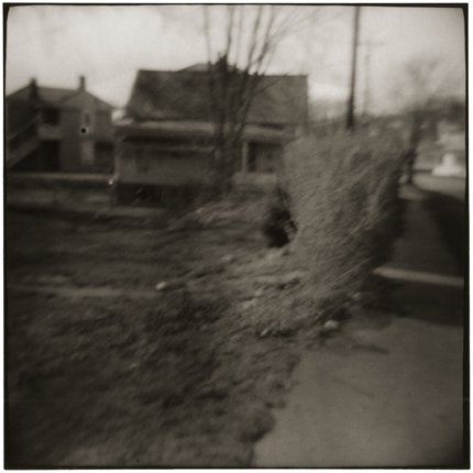 House and Bush, Nelsonville, Ohio, 1974 10 x 8 inches vintage silver print