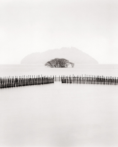 Submerged Trees, Kohoku, Honshu, Japan, 2002 9 x 7 inches edition of 45 toned silver print