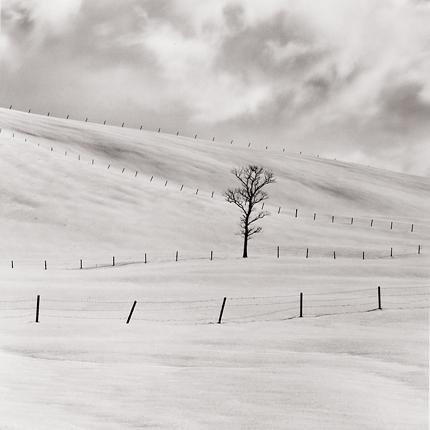 Frozen Landscape, Tashikaga, Hokkaido, Japan, 2002 7.5 x 8 inches edition of 45 toned silver print
