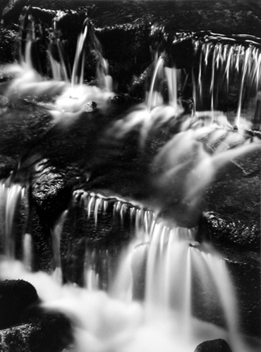 Fern Springs, Dusk, Yosemite Valley, California, c.1961 12.25 x 9 inches silver print
