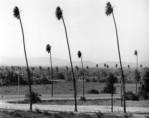 Santa Ana Winds, Riverside, California, 1983 from  Subdividing the Inland Basin  14 x 17 inches vintage silver print