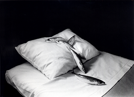 Mackerel and Pillow, 1979 11 x 14 inches silver print