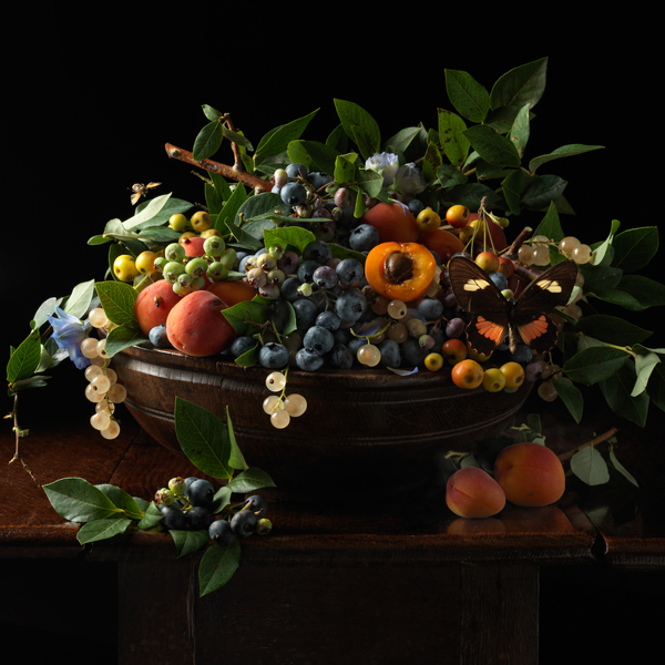 Blueberries and Apricots, 2013 from the series:  Natura Morta  24 x 24 inches (edition of 7) 36 x 36 inches (edition of 5) archival pigment print