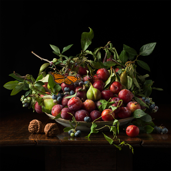 Plums and Chinese Walnuts, after G.G., 2013 from the series:  Natura Morta  24 x 24 inches (edition of 7) 36 x 36 inches (edition of 5) archival pigment print
