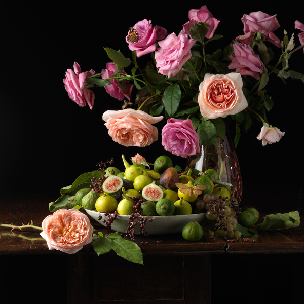 Roses and Figs, 2013 from the series:  Natura Morta  24 x 24 inches (edition of 7) 36 x 36 inches (edition of 5) archival pigment print