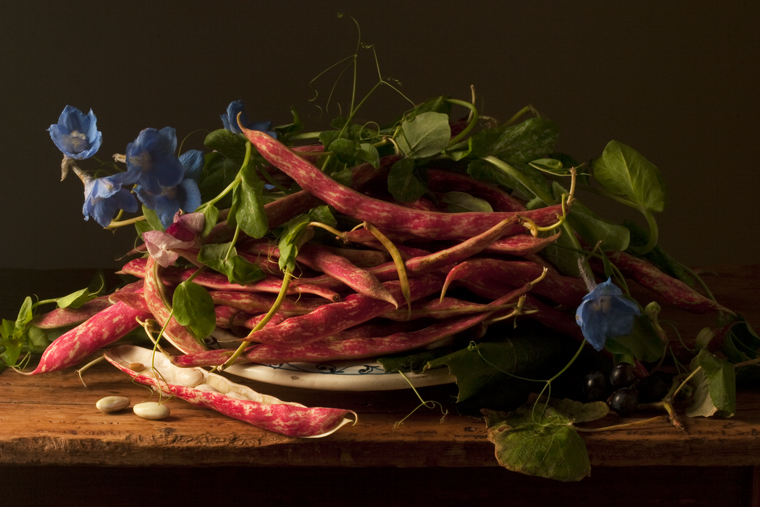 Cranberry Beans, after G.G., 2009 from the series:  Natura Morta  16 x 20 inches (edition of 15) 20 x 30 inches (edition of 7) 32 x 48 inches (edition of 5) archival pigment print