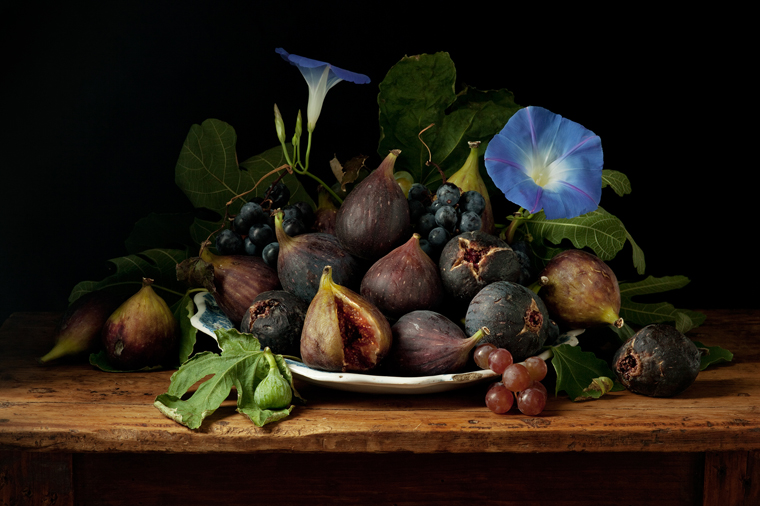 Figs and Morning Glories, after G.G., 2010 from the series:  Natura Morta  16 x 20 inches (edition of 15) 20 x 30 inches (edition of 7) 32 x 48 inches (edition of 5) archival pigment print