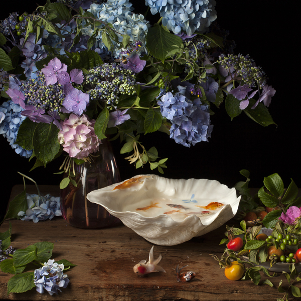 Flowers and Fish IV, after G.V.S., 2012 from the series:  Flowers, Fish and Fantasies  24 x 24 inches (edition of 7) archival pigment print