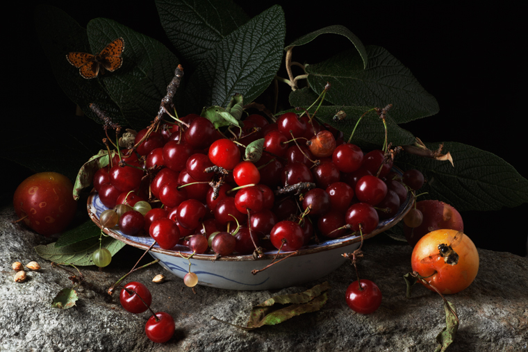 Red Cherries and Plums, after .GG., 2011 from the series:  Natura Morta  16 x 20 inches (edition of 15) 20 x 30 inches (edition of 7) 32 x 48 inches (edition of 5) archival pigment print