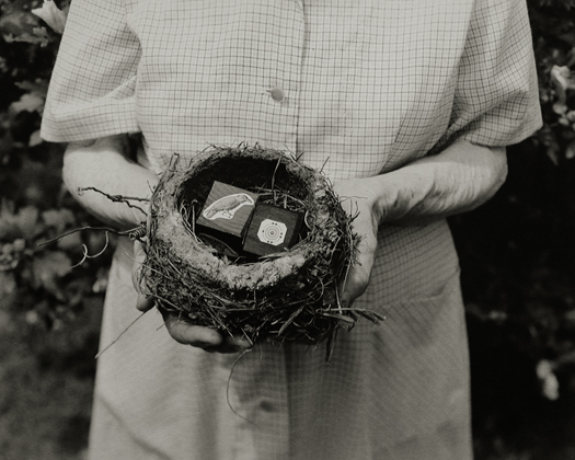 Nest, 2001 from the series:  Hymnal of Dreams  16 x 20 inches toned silver print