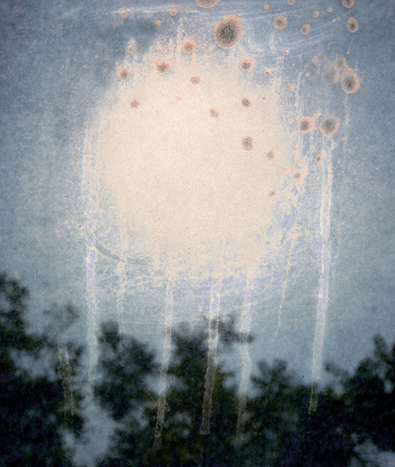 Into the Sun 40, 2009 26 x 22 inches 50 x 42 inches varnished pigment inkjet print