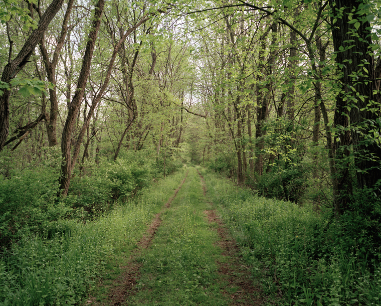 Railroad Landscape #3, former Poughkeepsie and Eastern right-of- way as ingress to private hunting preserve (abandoned 1938), MP 92, view south, Spring, McIntyre, New York, 2009  37 x 44 inches archival pigment print edition of 7