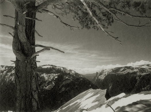 On The Heights, Yosemite Valley, c.1927 6 x 8 inches vintage parmelian print