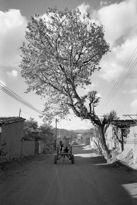 San Sebastián Abasolo, Oaxaca, Mexico, 2004 20 x 16 inches edition of 25 silver print