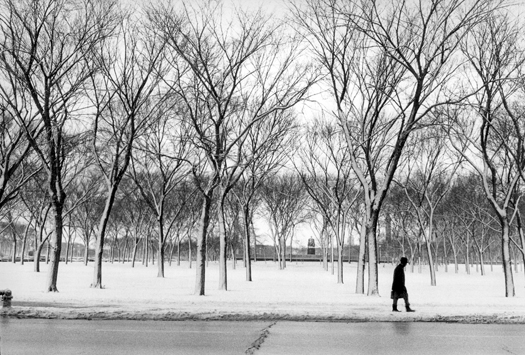 Grant Park from Jackson Street, Chicago, 1973 10 x 14 inches silver print