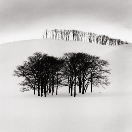 Hilltop Trees, Study 3, Teshikaga, Hokkaido, Japan, 2004 7.5 x 7.75 inches edition of 45 toned silver print