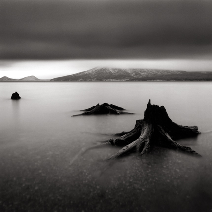 Tree Remains, Bifue, Hokkaido, Japan, 2004 7.5 x 8 inches edition of 45 toned silver print