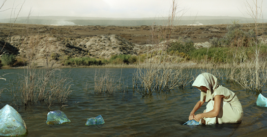 Wetlands, 2006 20 x 40 inches 25 x 50 inches edition of 5 chromogenic dye coupler print mounted to dibond aluminum