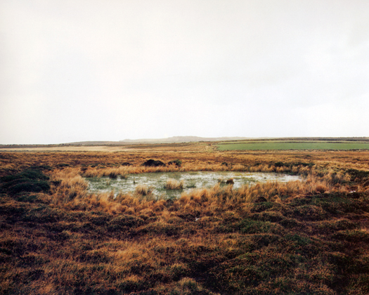 Penwith Moors, Bosporthennis Common, 1998 from the series  Dew Ponds  26 x 32 inches edition of 6 chromogenic dye coupler print