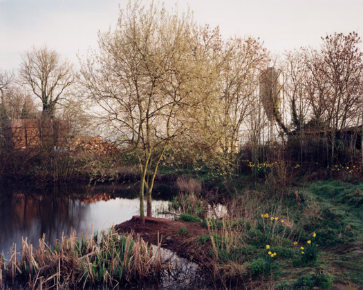March 1999 from the series  Upton Pyne  36 x 42.5 inches edition of 8 chromogenic dye coupler print