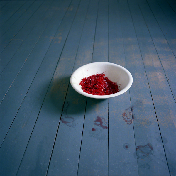 Bowl of Cherries, Rockport, Maine, 2007 from the series  You Look At Me Like An Emergency  14 x 14 inches (edition of 10) 28 x 28 inches (edition of 5) 40 x 40 inches (edition of 7) chromogenic dye coupler print