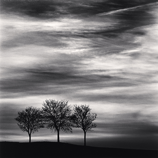 Three Trees at Dusk, Fain les Moutiers, Bourgogne, France, 2013 7.75 x 7.75 inches  edition of 45 toned silver print