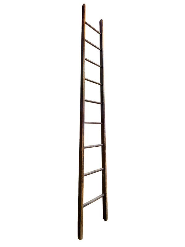 Large Ladder: Wooden, 2014  edition of 10 pigment ink on Photo-Tex paper with foamcore and acrylic paint) 110 x 16 inches