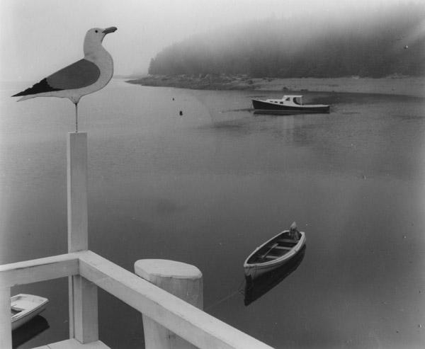 Ellen Auerbach Seagull, Maine, 1941 8 x 9.25 inches silver print