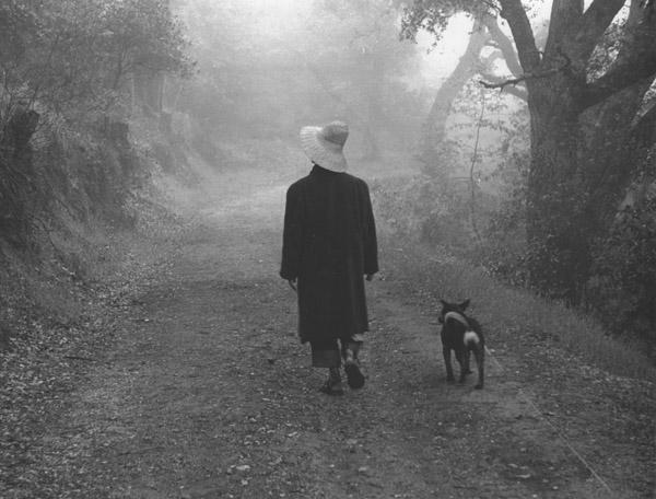 Ellen Auerbach Big Sur, Fog, 1950 10 x 13 inches silver print