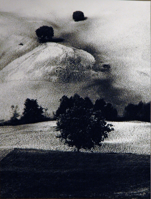 "From the series ""Paesaggi,"" n.d. 15 x 11.5 inches silver print"