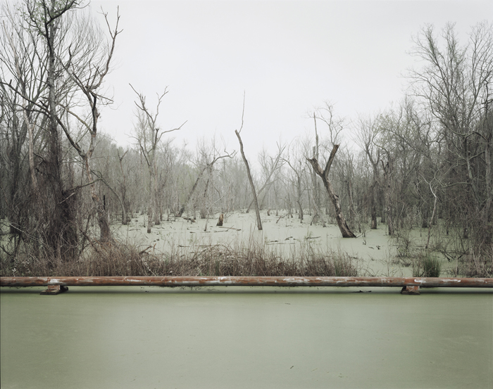 Richard Misrach Swamp and Pipeline, Geismar, Louisiana, 1998 20 x 24 inches (from a sold out limited edition of 25) chromogenic dye coupler print