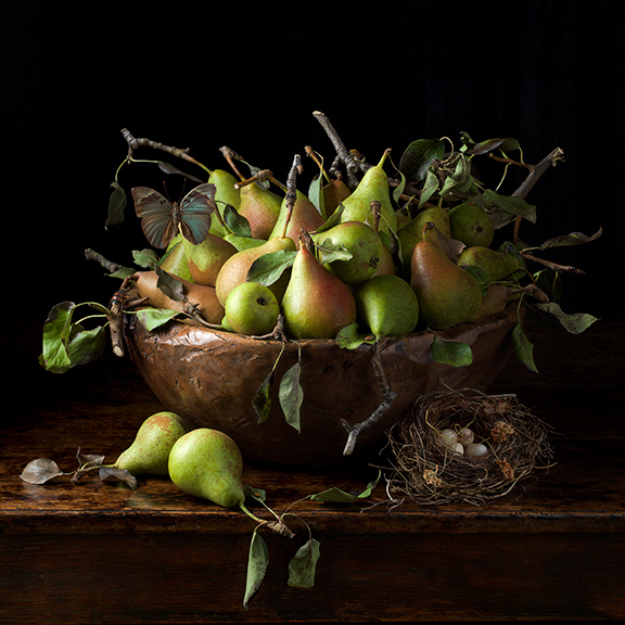 Orchard Pears, 2016 16 x 16 inches (edition of 15) 24 x 24 inches (edition of 7) 36 x 36 inches (edition of 5) archival pigment print