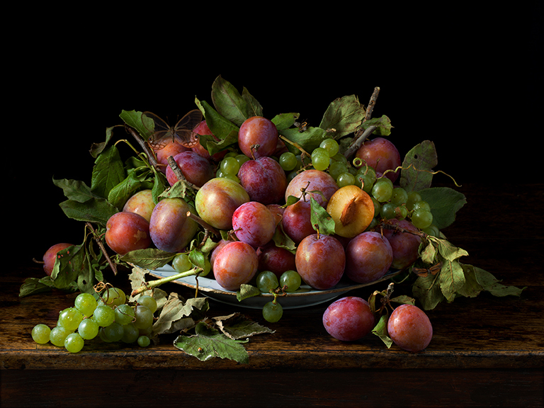 Orchard Plums, 2016 15 x 20 inches(edition of 15) 22.5 x 30 inches (edition of 7) 36 x 48 inches (edition of 5) archival pigment print