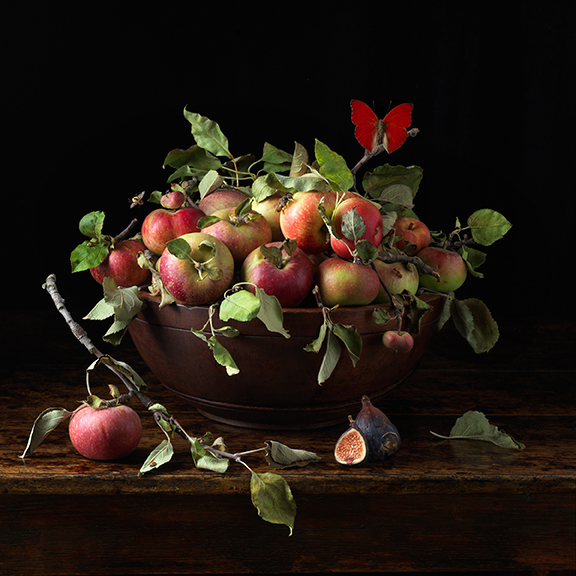 Orchard Apples, 2016 16 x 16 inches (edition of 15) 24 x 24 inches (edition of 7) 36 x 36 inches (edition of 5) archival pigment print
