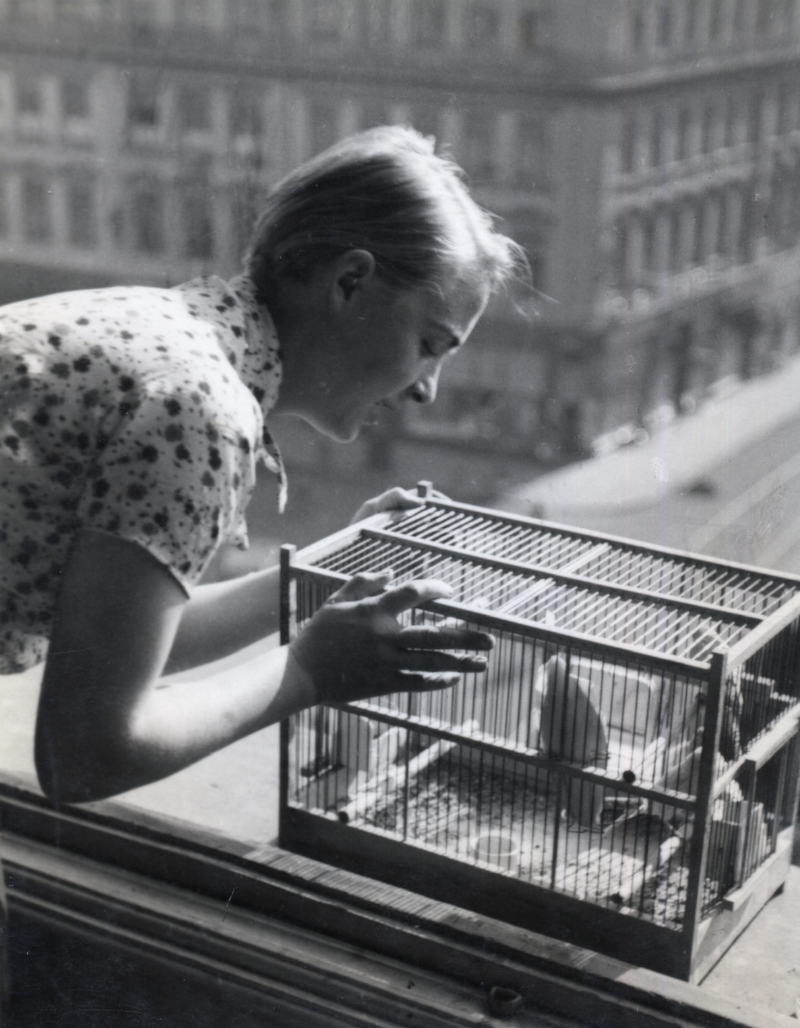 Elisabeth Hase Untitled (Woman with Birdcage), 1932-33 9.5 x 7 inches vintage silver print