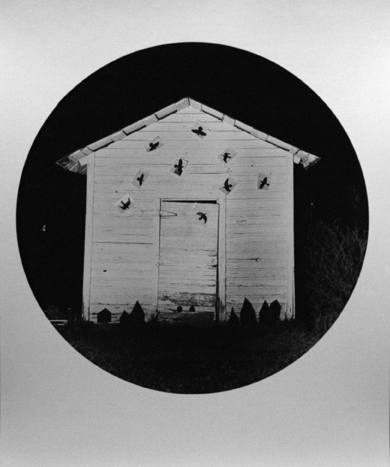 Elijah Gowin Birds over Village, 2002  20 x 16 inches  toned silver print