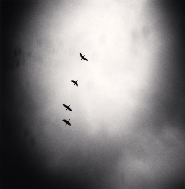 Michael Kenna  Four Birds Flying, Tbilisi, Georgia, 2008  7.75 x 7.75 inches (edition of 45)  toned silver print